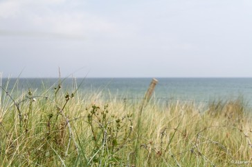 d-day-2014_53