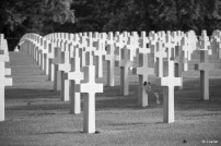 d-day-2014_75